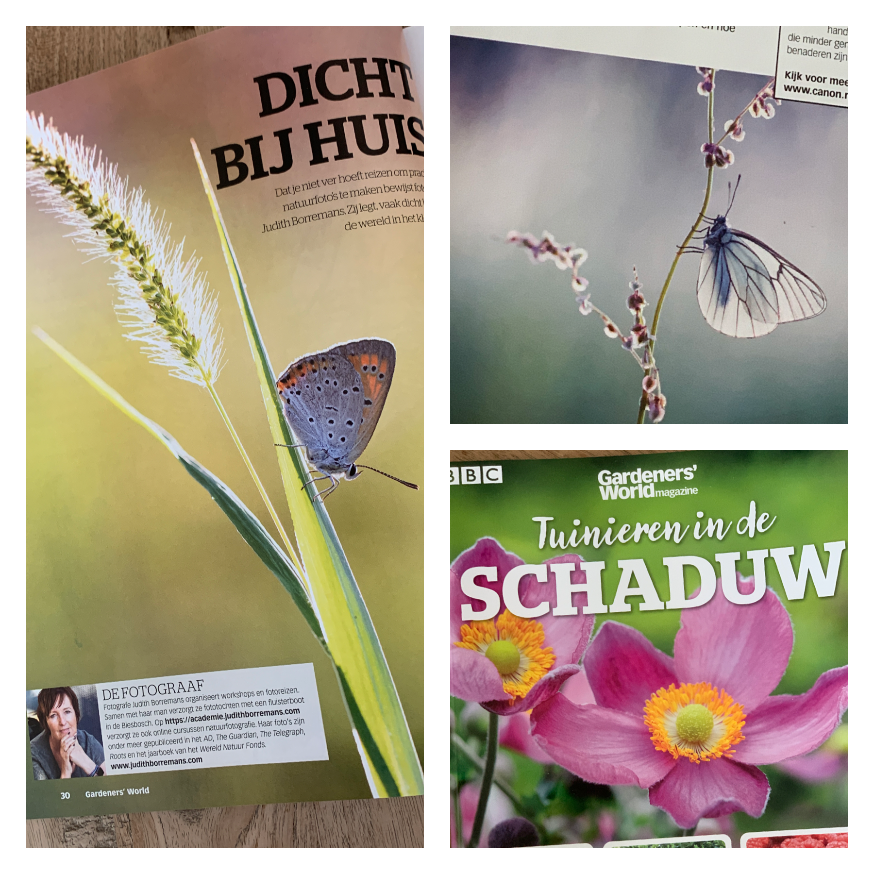 Publicatie Gardeners World Magazine