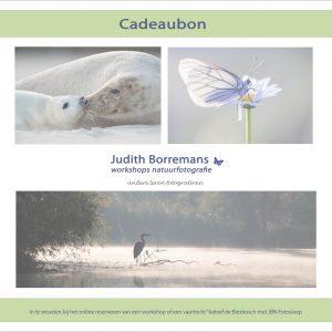 Cadeaubon Judith Borremans