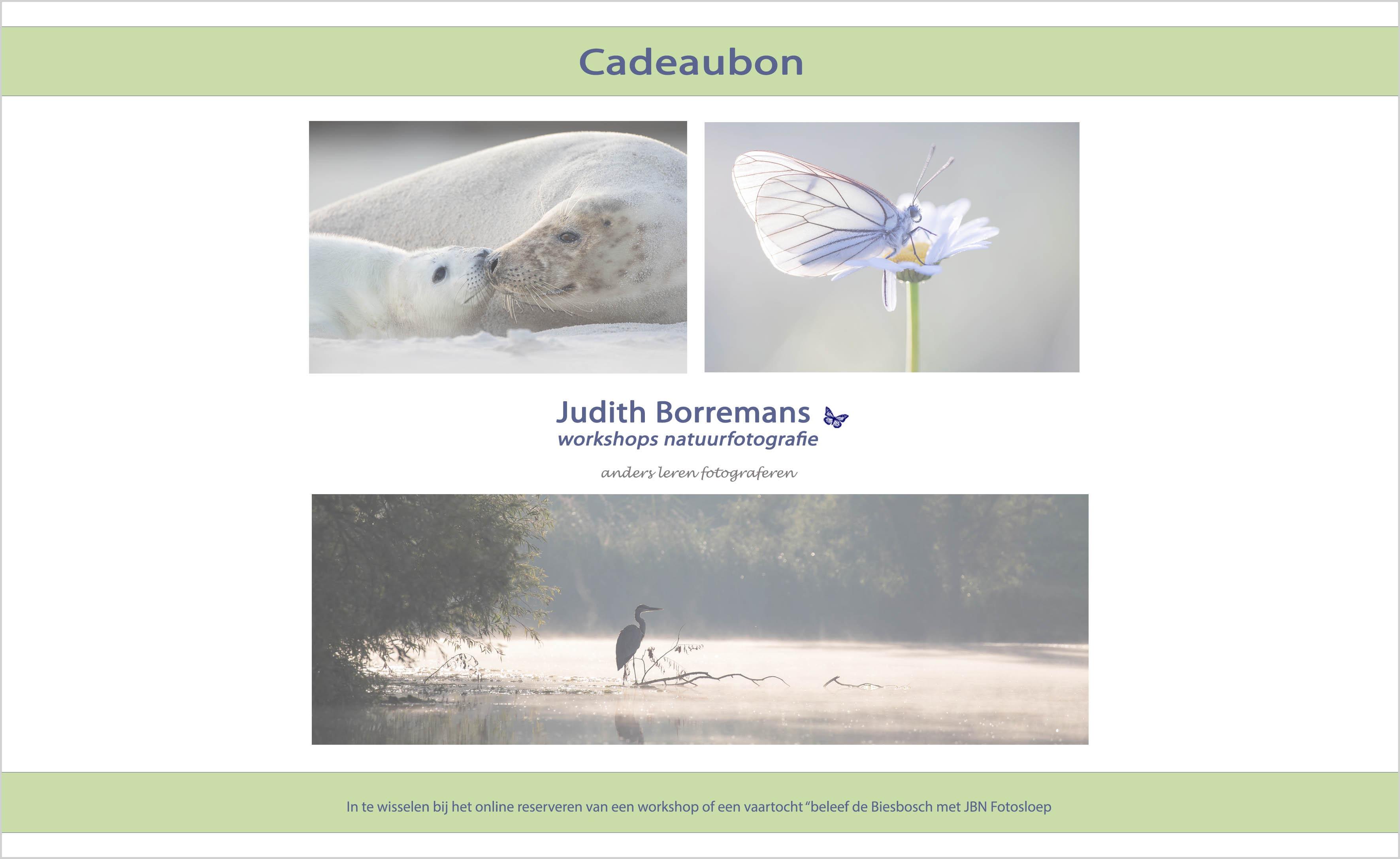 Cadeaubon Voor Een Fotografieworkshop Of Tocht Met JBN Sloep