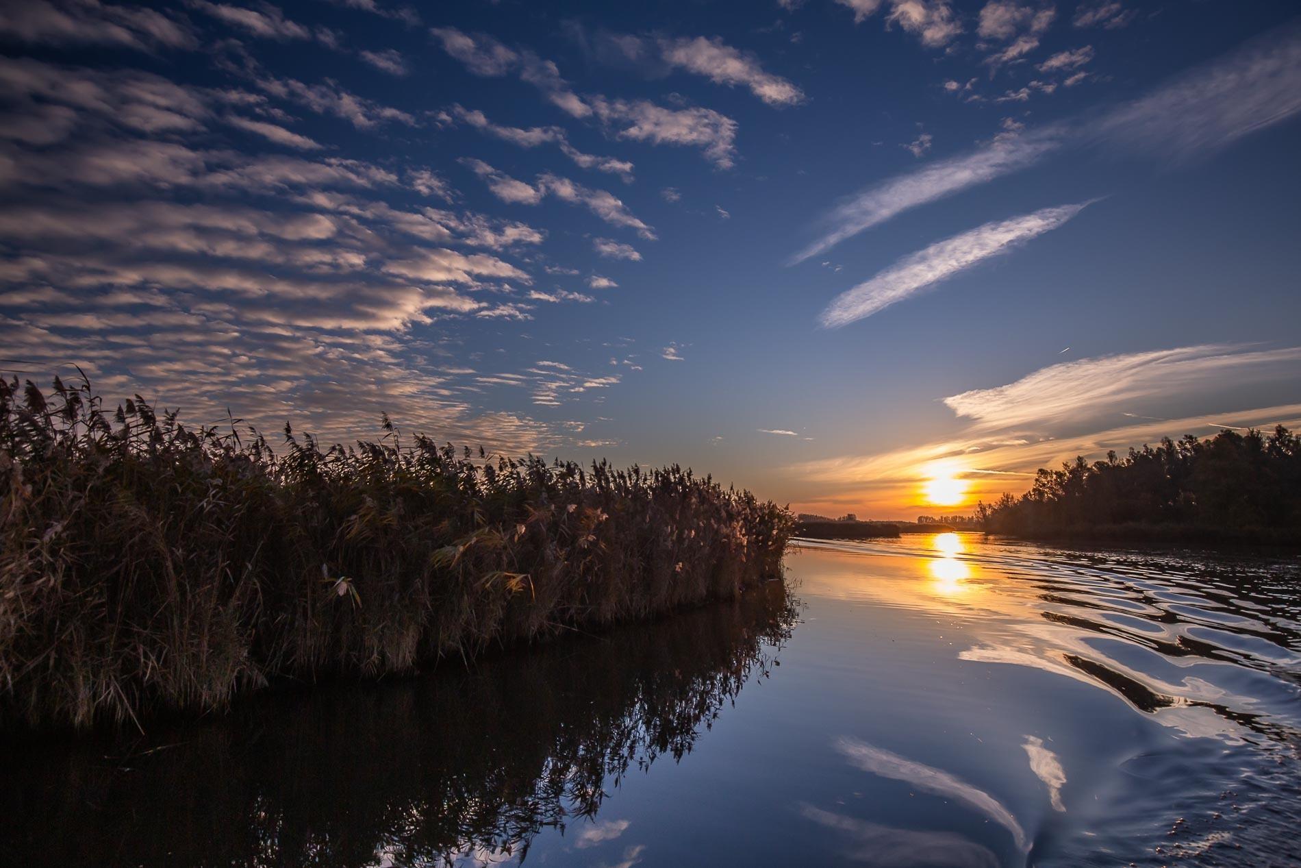 Brabantse Biesbosch met JBNsloep